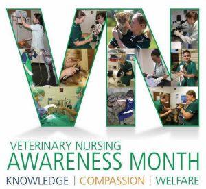 Vet nurse awareness month