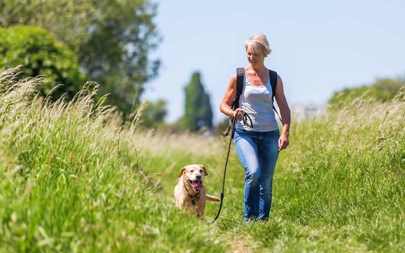 Coronavirus and dog walking
